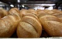 В Украине стремительно сокращается производство хлеба