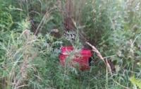 На окраине Черновцов обнаружен чемодан с телом ребенка