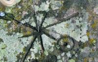 Найдены самые старые солнечные часы на земле