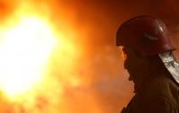 Страшный пожар под Киевом: огонь уничтожил супермаркет и несколько квартир
