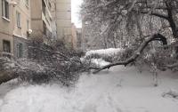 Погода не пощадила оккупантов в Луганске (фото)