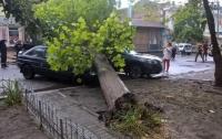 Непогода на Херсонщине: без света остались 13 населенных пунктов (видео)