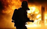 Жуткий пожар в жилом доме на Сумщине: погибла пожилая женщина