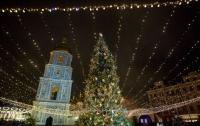 Названа цена главной елки Украины