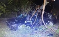 Два человека погибли от удара легковушки в электроопору на Львовщине