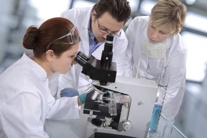 Канадские ученые предложили способ предотвратить образование метастазов при раке груди