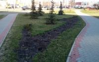 В спальном районе столицы украли кустарники и деревья из сквера