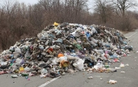 Тарифы на вывоз мусора в столице изменятся