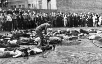 В Литве объявят год памяти борца за независимость, обвиняемого в убийствах евреев