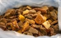 У житомирских копателей изяли 660 кг янтаря и оружие