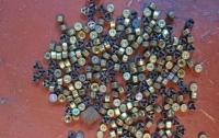 На Донетчине в подпольной мастерской в магазине изготавливали боеприпасы