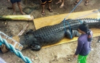 На Филиппинах поймали гигантского крокодила