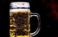 Пиво: врачи рассказали о пользе напитка