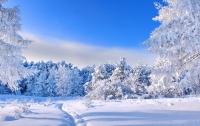 В Украину придет настоящая зима: названа дата