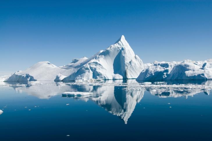 ВАрктике отыскали останки зубастой птицы возрастом 90 млн лет