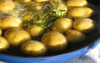 Любительницам картошки грозит диабет