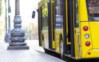 В Киеве пассажиры маршруток работают над тем, чтобы остаться без транспорта