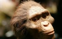 Археологи нашли на Крите следы человека возрастом 5,7 млн лет