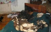 В Киеве из пожара спасли старенькую бабушку