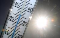 Ученые предсказали пятикратное увеличение смертности от жары