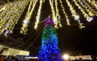 Стало известно, когда демонтируют главную елку Украины