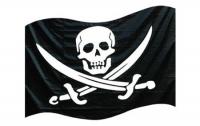 «Пираты» выложили в сеть средство против цензуры