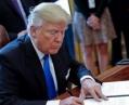 Трамп ввел режим чрезвычайного положения