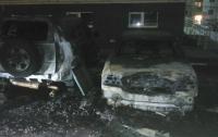 Поджог или самовозгорание: в Одесской области сгорели два автомобиля (видео)