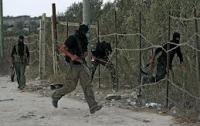 В Египте обезвредили четыре террористических центра