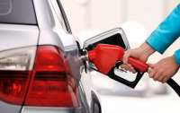 Президент активно занимается ценами на бензин