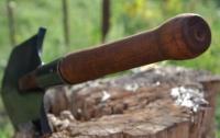 В Виннице наркоман избивал прохожих саперной лопаткой