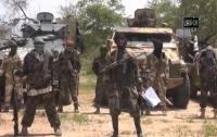 В Нигерии освобождены более 800 заложников