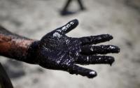 Украина втрое увеличила импорт нефти