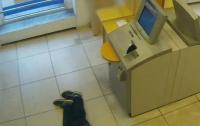 В Германии пенсионера оставили умирать в отделении банка