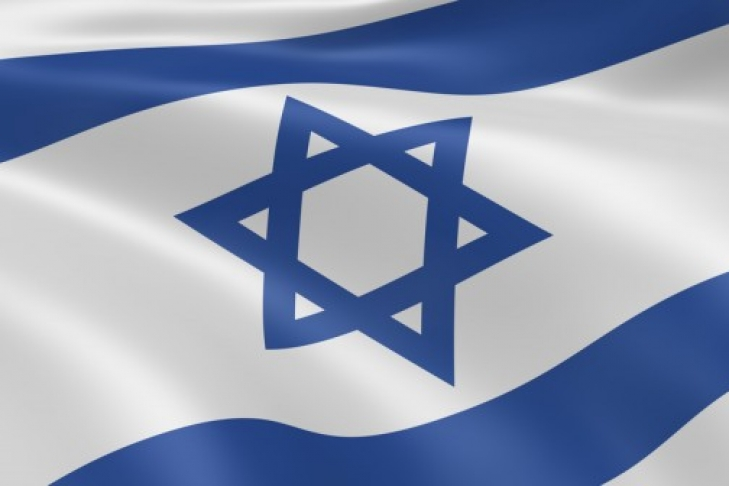 Власти Германии осудили сожжение флагов Израиля