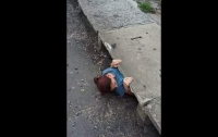 Смелая девочка спасла котенка из канализации (видео)