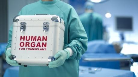 В четырех городах Украины откроют центры трансплантации костного мозга, – Супрун