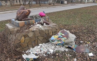 В Луганске украинофобы в шестой раз за год повредили львовского льва