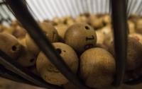 Житель Черкасской области выиграл миллион в лотерею