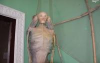 В Одесском музее выставили скелет русалки