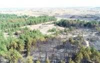 Удалось погасить пожар на полигоне, который бушевал много часов (видео)
