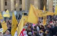 Масштабная акция протеста охватила Грузию (видео)