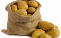 Почему картошка в Украине не становится дешевле