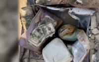 $52 тысячи и драгоценности: в США семья нашла клад в своем дворе (видео)