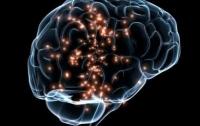 Ученые рассказали о том, что происходит с мозгом во сне