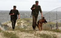 Собака-пограничник по кличке Моби задержала троих нелегалов