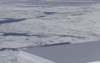 В Антарктиде найден айсберг правильной прямоугольной формы