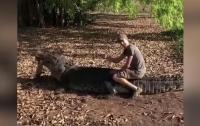 Турист сел на пятиметрового австралийского крокодила (видео)