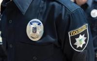 Из-за избиения харьковской школьницы открыли производство
