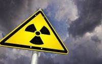 В Чернобыльской зоне отчуждения четверо иностранцев пострадали в ДТП с лосем